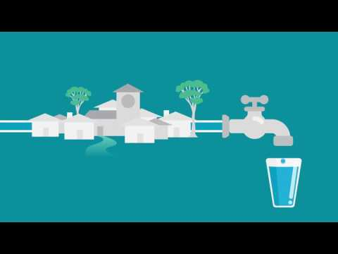 DoW – Water For Food